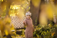 Golden Autumn And Child Play W...