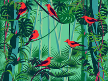 Scarlet Tanagers Birds In The Thickets Of The Flowering Rainforest.