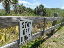 Stay Off The Dune