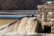 Trees Trapped By Old Dam On Blackstone River