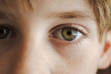 Portrait Of A Child With Freckles
