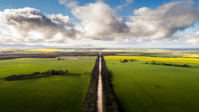 A Dirt Rural Road Leads Off Into The Distance Surrounded On Both Sides By Lush Fertile Green Farming Countryside On A Fair Weather Day