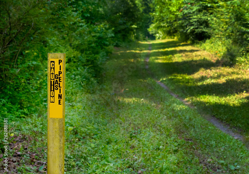 Fototapeta Gas pipeline warning marker cutting through a forested  area. obraz