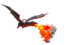 Dragon Fly 3D Render On White ...