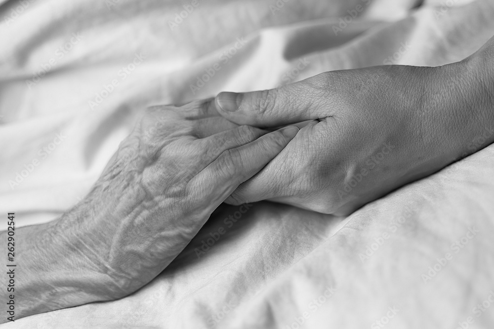 Fototapeta A young woman holding the hand of an old woman in a hospital bed, black and white