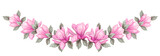 Fototapeta Kwiaty - Hand drawn painting watercolor pencils and paints pink magnolia flowers isolated on white background