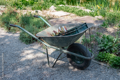 Fotografía  Wheelbarrow with some gardening stuff in a garden on a sunny day
