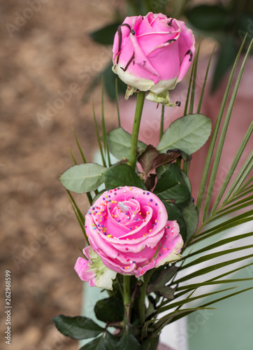 Fotografia, Obraz  Close up of pink rose flower with colorful decorations