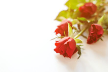 Red Roses At White Table. Flowers Composition. Morning Mood With Flowers. Happy Valentine's Day. Happy Lovers Day Mockup