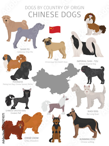 Dogs by country of origin Canvas Print