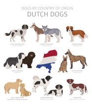 Dogs By Country Of Origin. Dut...