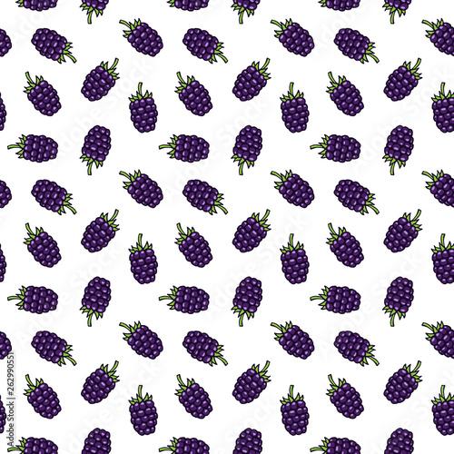 Fényképezés  Blackberry (bramble, dewberry) hand drawn pattern vector illustration