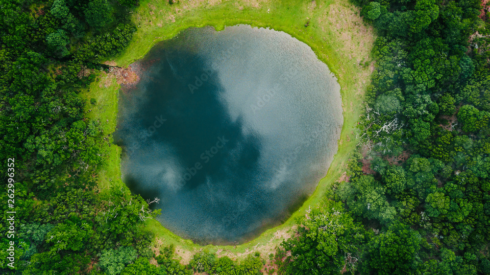Fototapety, obrazy: Aerial view of natural pond surrounded by pine trees in Fanal, Madeira island, Portugal