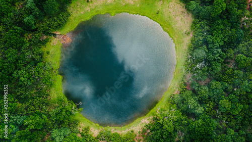 Photo Aerial view of natural pond surrounded by pine trees in Fanal, Madeira island, P