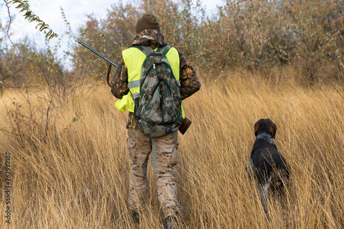 Foto op Canvas Jacht Hunter with a german drathaar and spaniel, pigeon hunting with dogs in reflective vests