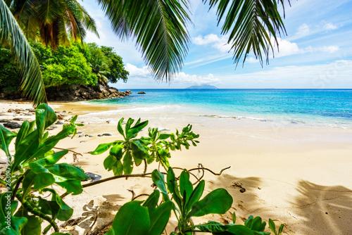Fotografie, Obraz  Paradise Beach on the seychelles through palm leaves