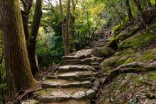 Pilgrimage To Japan Shrine