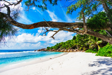 beautiful tropical beach with granite rocks,white sand,turquoise water,seychelles 2
