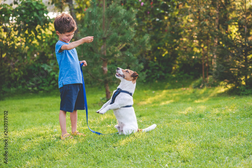 Fotografie, Tablou Preschooler kid boy doing dog obedience training classes with his pet