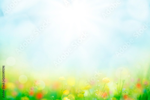 Printed kitchen splashbacks White abstract background with green grass and flowers over sunny blue sky