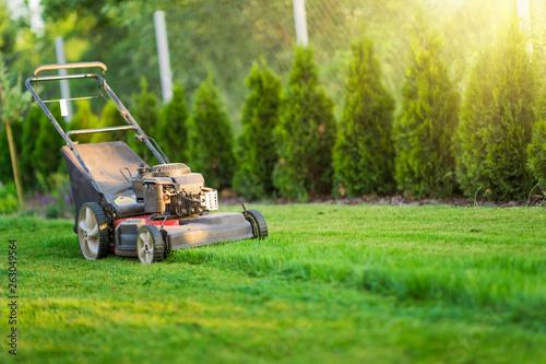 Fotomural  Lawn mower cutting green grass in sunlight