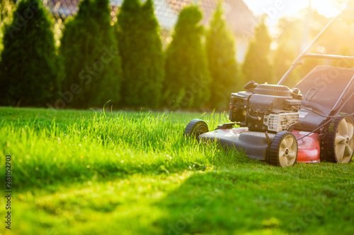 Foto auf Gartenposter Gras Lawn mower cutting green grass in sunlight