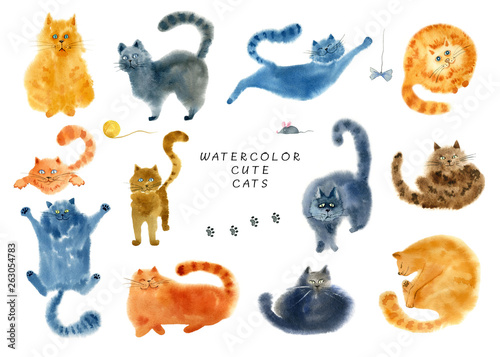 Photo  Set of cute cats on white background.