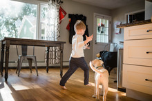 Boy Running With Dogs