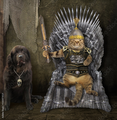 The cat king with a sword is sitting on the iron throne inside the castle Fototapet