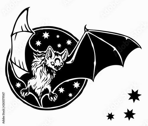 Canvas Print bat flies against the sky and stars