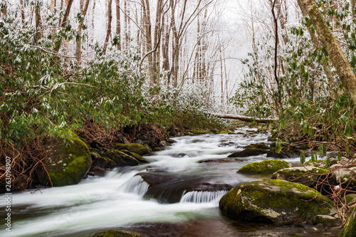 Fototapety, obrazy: Winter scenery of mountain stream in Great Smoky Mountains National Park