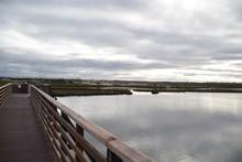 Huntington Beach, CA., U.S.A. Mar. 3, 2019. Bolsa Chica Ecological Reserve.  Tidal Estuary, Fresh/salt Water Marsh, Mud Flats, Water/riparian Fowl Habitat & Rookery For California Least Tern