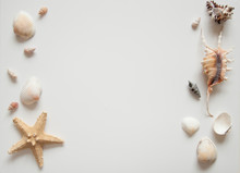 White Light Background With Seashells And Sea Stars For The Site Frame For Text. Journey To The Sea Is A Memory.