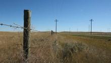 Prairie Fence Beside Road. Wind Blowing. Alberta, Canada.