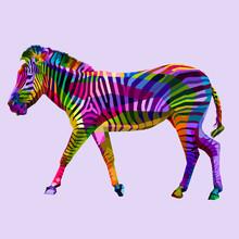 Colorful Walking Zebra On Geom...