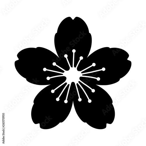 Cherry blossom flower or sakura flat vector icon for apps and websites Wallpaper Mural
