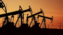 Many Oil Pumps At Sunset Under The Red Sky On Industrial Platform Field With Crude Petroleum Hydraulic Extraction Units