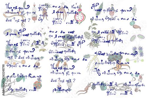 ヴォイニッチ手稿の背景 Wallpaper Mural