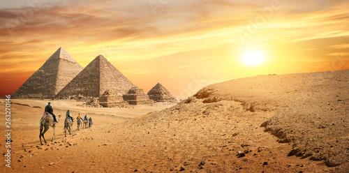 Poster Chameau Camel caravan in desert