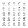 Restaurant, Food icons, line, Sketch, Vector and Illustration