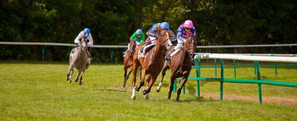 Course de chevaux au galop