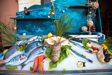 Still Life Of Fresh Fish In Rethymno In Crete (Greece). Seafood On Ice: Octobus, Snails, Crabs, Shrimp, Fish Etc
