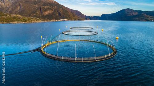 Valokuva  Salmon fish farm. Hordaland, Norway.