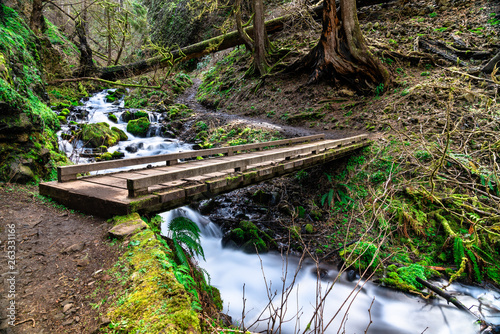Recess Fitting Forest river Wahkeena Creek in the Columbia River Gorge, USA
