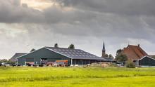 Dairy Farm Barn On Dutch Count...