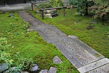 Japanese Moss Garden In Kyoto