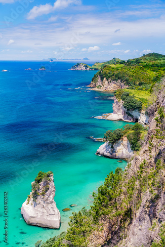 Fotografia view from the cliffs at cathedral cove,coromandel peninsula, new zealand 11