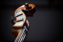 Double Bass Scroll And Tuning Pegs