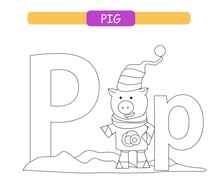 Letter P And Funny Cartoon Pig. Coloring Page. Animals Alphabet A-z. Cute Zoo Alphabet In Vector For Kids Learning English Vocabulary. Printable Sheet.