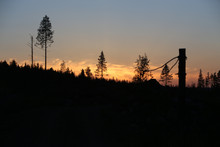 Forest Industry Logging Site In Sunset